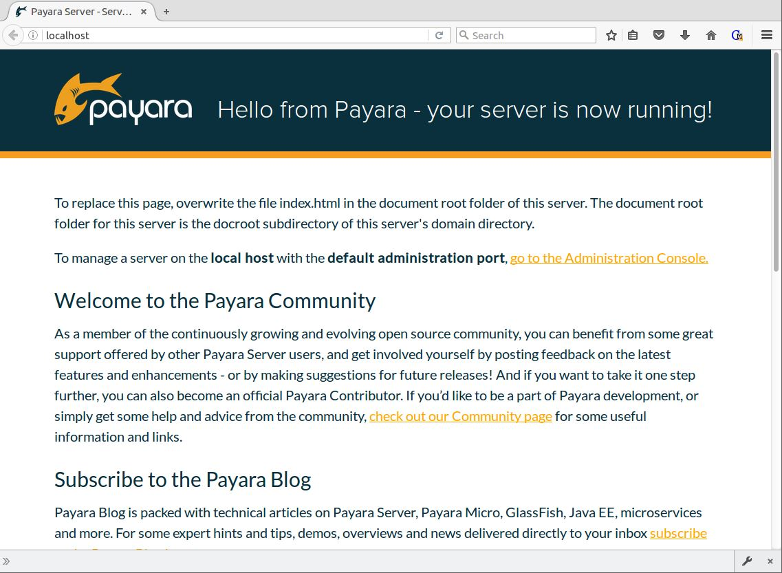 Figure 8 - Payara with localhost proxied through NGINX