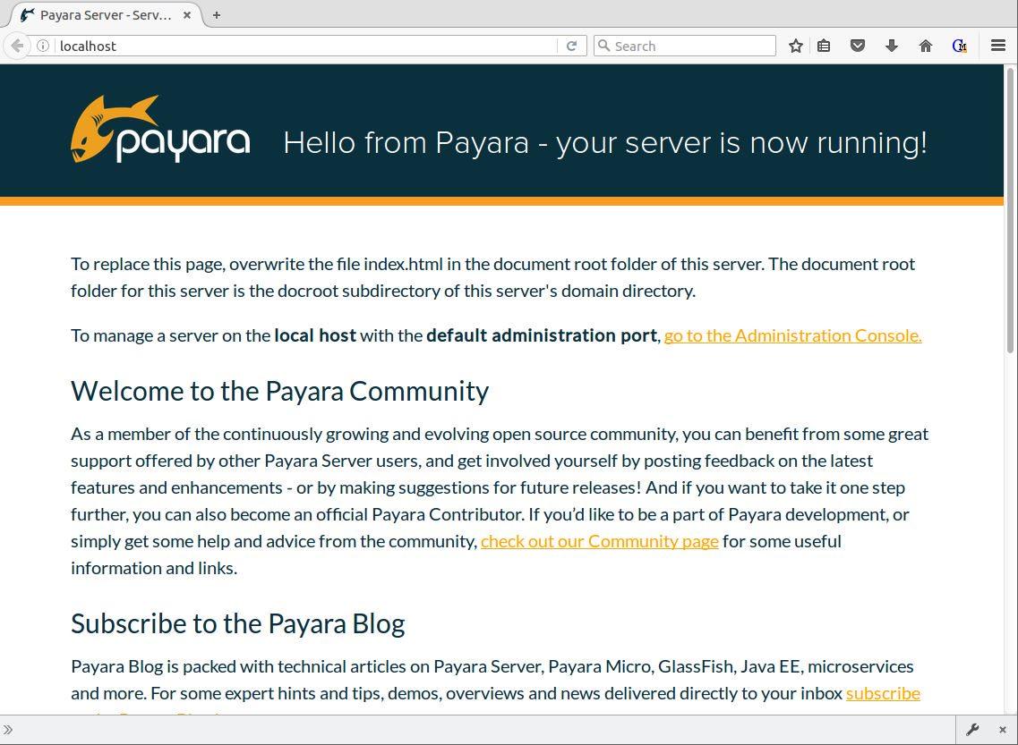 Figure 8 - Payara with localhost proxied through NGINX